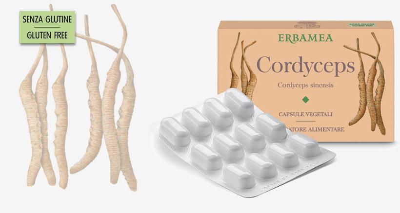 """Cordyceps… dal fungo """"Caterpillar"""" l'attività tonica che giova al benessere!"""